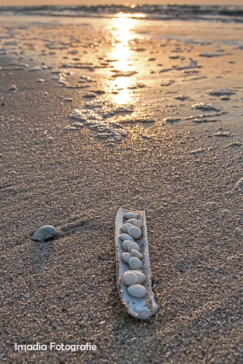 Imadia Stonehenge Birth2